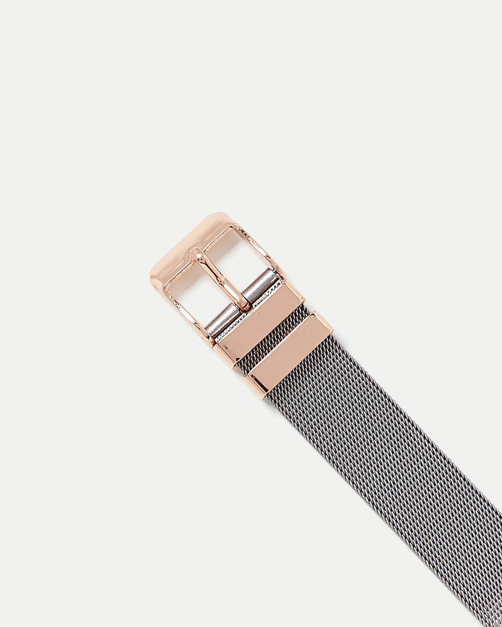 Dual Tone Mesh Band Watch