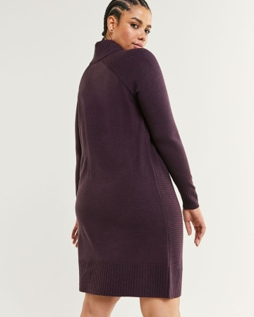 Long Raglan Sleeve Mock Neck Sweater Dress