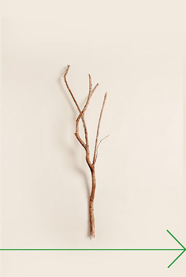 Fait à partir de Bois renouvelable